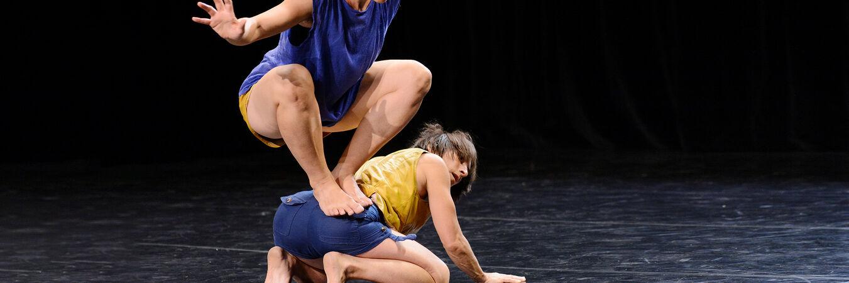 Fauve | Fauve - Cie marie-Louise Bouillonne - spectacle danse pour les petits