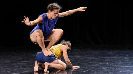 En ce moment, sur nos plateaux / Compagnie Marie-Louise Bouillonne, Fauve - Cie marie-Louise Bouillonne - spectacle de danse à partir de 3 ans