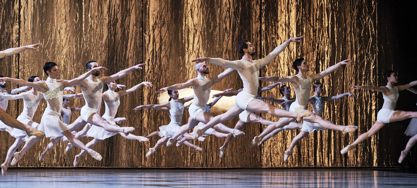 Le Lac des cygnes   ANNULÉ   CCN - Ballet de l'Opéra National du Rhin– Piotr Illitch Tchaïkovski – Radhouane ElMeddeb