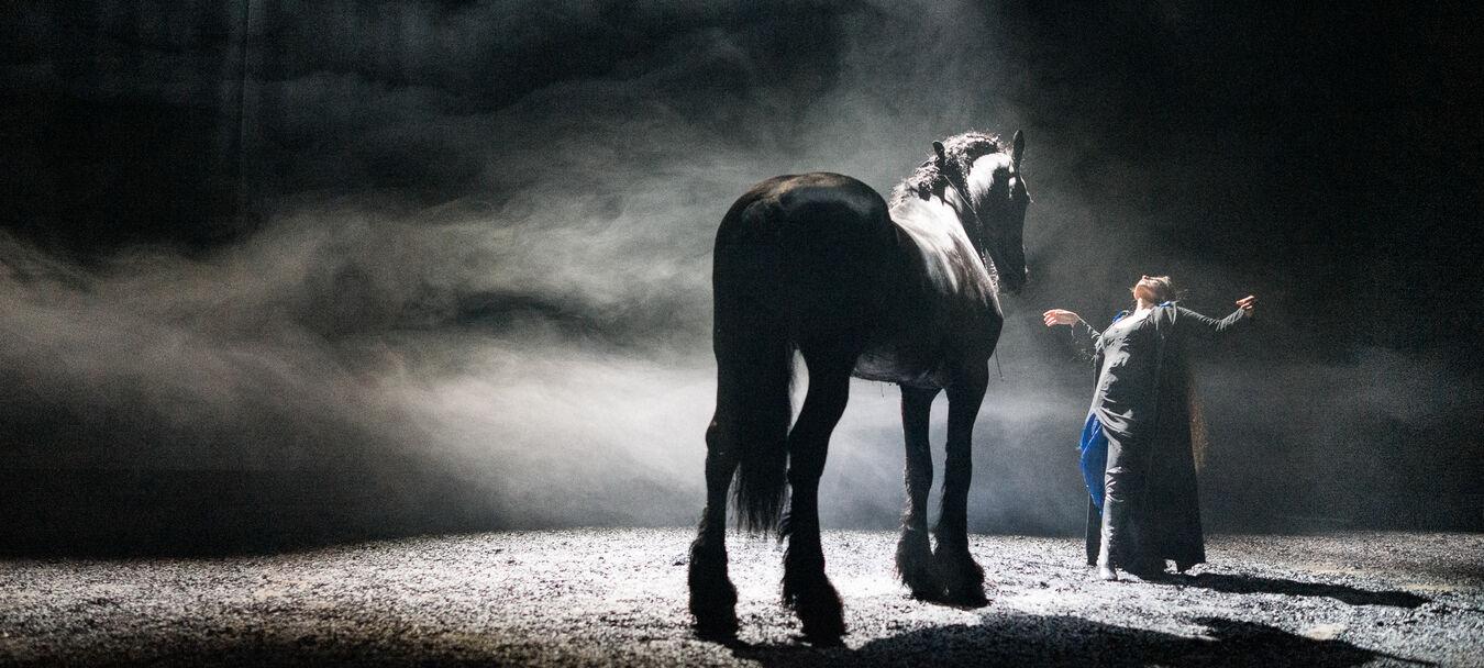 Nyx | Fabrice Melquiot – Camille – Théâtre du Centaure